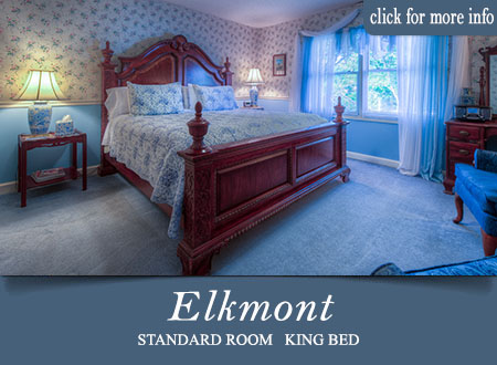 Gtalinburg B&B Room - Elkmont