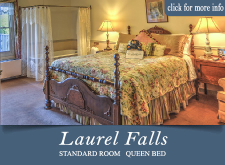 Gtalinburg TN bed and breakfast room - Laurel Falls